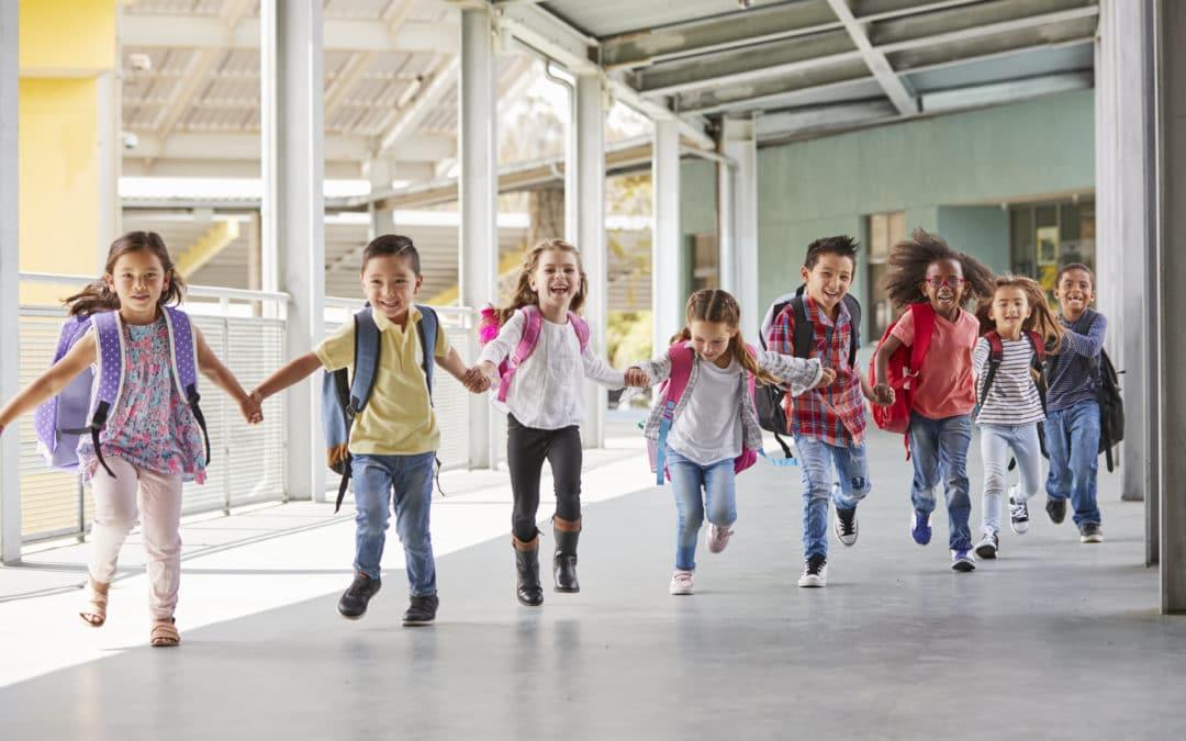 Sommerschule RLP – nächste Schritte und Informationen